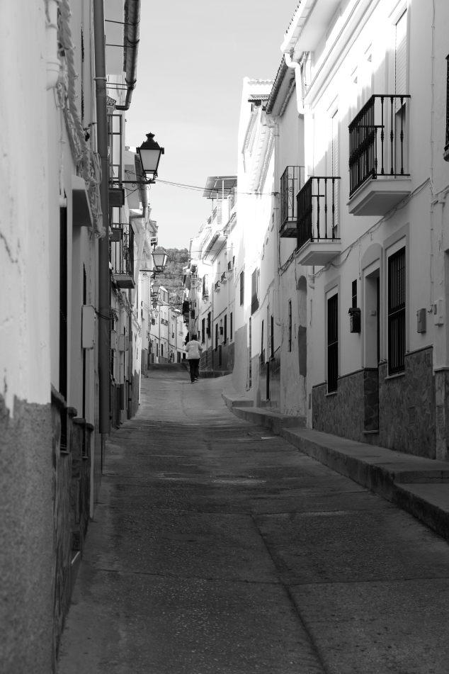 Calle El Cerecillo